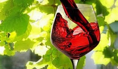 Бокал вина поможет снять усталость и стресс