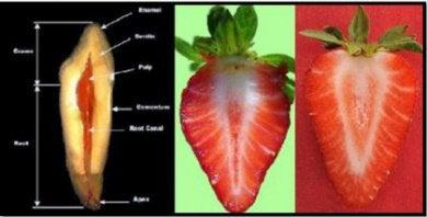 Клубника и другие продукты