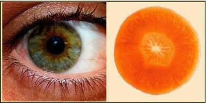 11 продуктов, которые особенно полезны для нашего организма