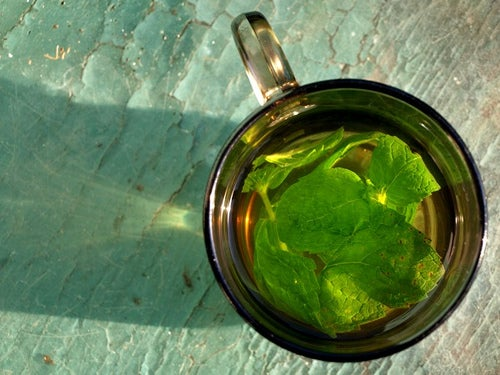 Чай из мяты и камни в желчном пузыре
