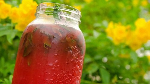 Напиток из арбуза