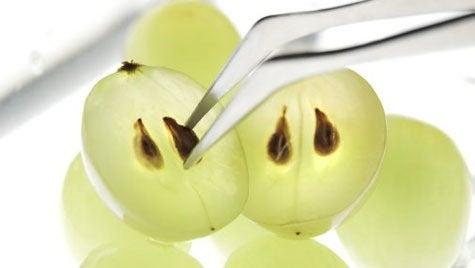 Виноград и виноградные косточки