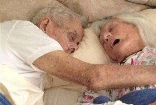 Вечная любовь стариков