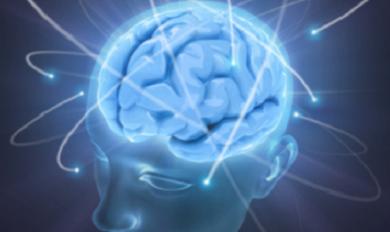 Тревога и мозг