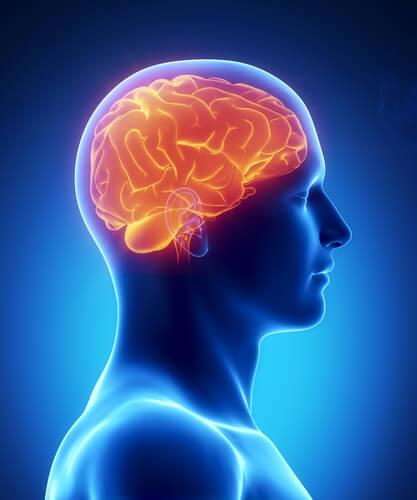 Кислород в крови и мозг