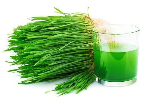 Зеленые овощи богаты хлорофиллом и другими полезными веществами