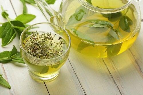 Зелёный чай поможет сбросить вес