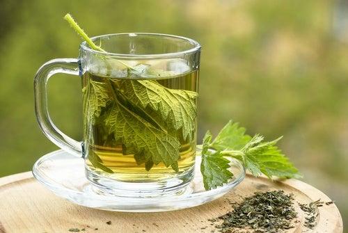 Чай из крапивы уменьшит боль в костях
