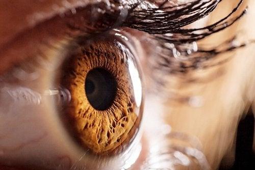 Линзы и зрение