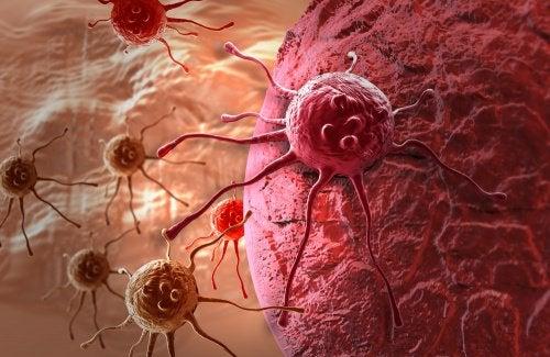 Клетки и рак молочных желез