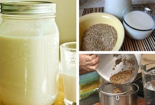 Молочко из канареечного семени содержит много белка и клетчатки и может стать хорошей альтернативой коровьему молоку