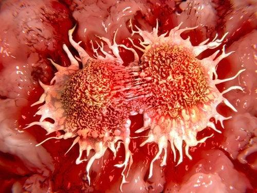 Рак и огурцы