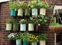 Сад на балконе поможет тебе проявить себя творчески