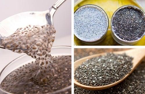 Семена чиа: натуральное средство для правильной работы кишечника
