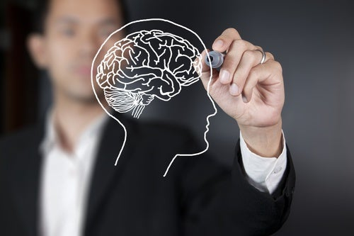 Яблоки улучшают здоровье мозга