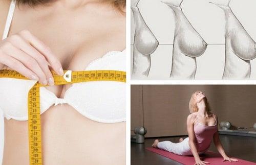 Как укрепить грудь