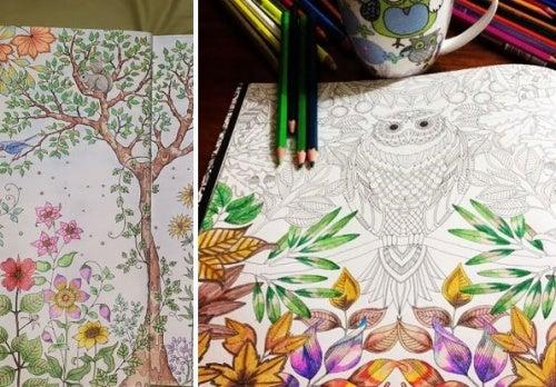 Раскрашивать рисунки