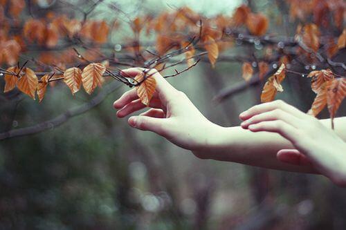 Руки, касающиеся листьев