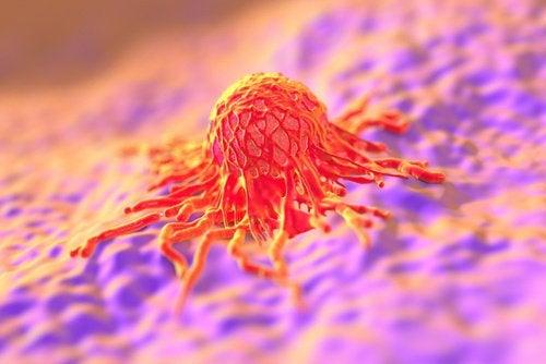 Вирус папилломы человека и рак шейки матки