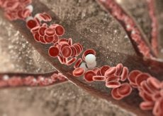 Поддерживать артерии здоровыми