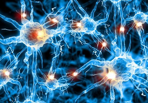 мозг и нейронные связи