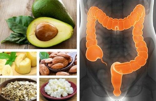 Эти 6 продуктов помогут вылечить синдром раздражённого кишечника