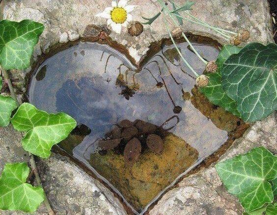 Вода и одиночество