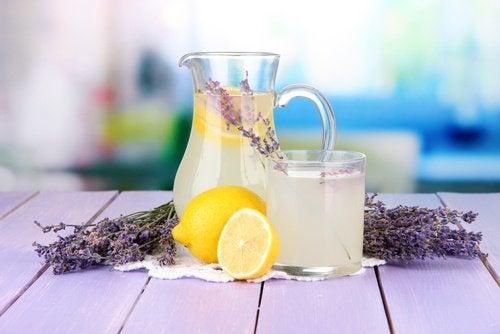Лавандовый лимонад с растением и головная боль