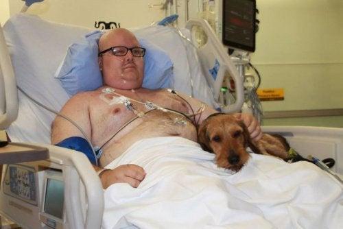 Домашние животные в больнице