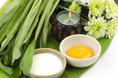 Эта маска для груди на основе натуральных ингредиентов отлично питает кожу и позволяет укрепить грудь