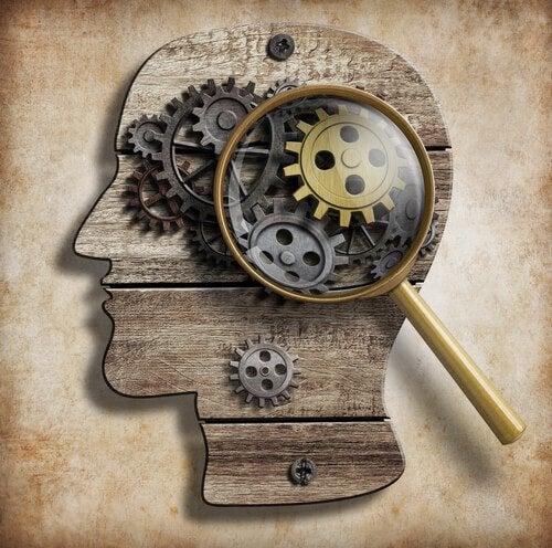 Секреты мозга и шоколад