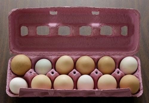 Как хранить яйца и продукты