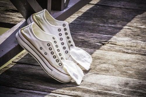 Лук для ухода за обувью