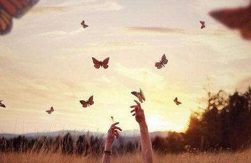 Руки и бабочки