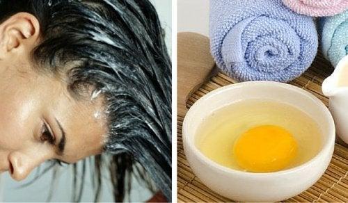 Яичный шампунь и волосы
