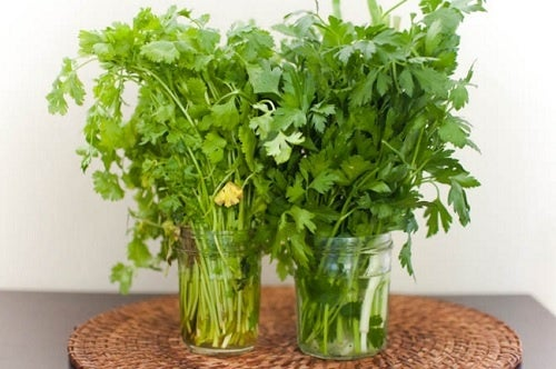 Кухня и горшки с зеленью