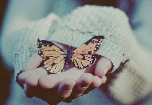 Бабочка в руках и способность полюбить себя