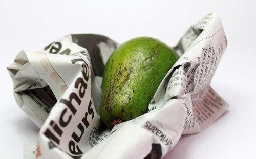 Авокадо в газете