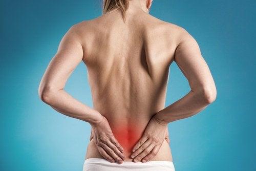 Почки и боль в спине