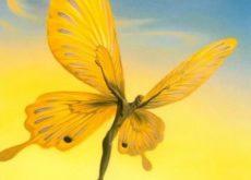 Мужчина бабочка и трудности