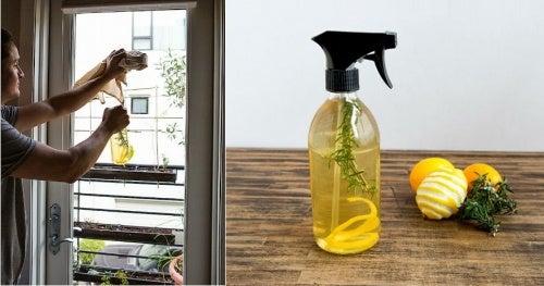 Лимонная цедра уничтожит неприятные запахи в доме