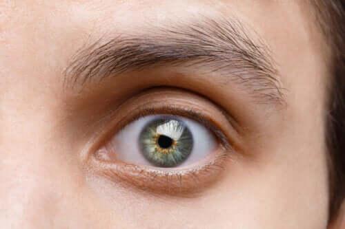 О чем говорят ваши зрачки: 9 интересных фактов