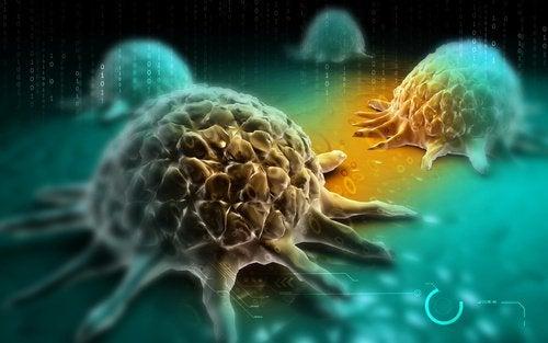 Рак желудка и профилактика