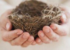 Синдром опустевшего гнезда и одиночество