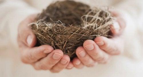 """""""Синдром опустевшего гнезда"""": когда дом наполняет одиночество"""