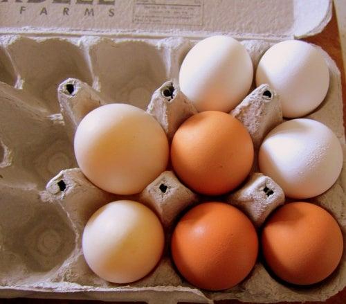 Коробки из-под яиц экономят время