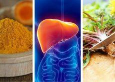 Печень и лекарственные растения