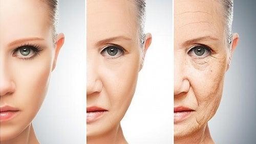 Питание и старение
