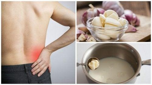 Ишиас: рецепт чесночного молока для облегчения боли