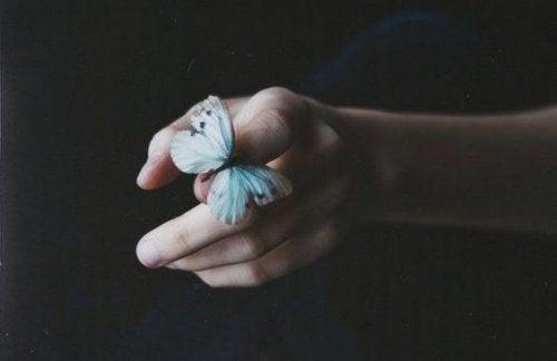 Отстраненность как бабочка